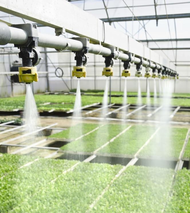 subsidie glastuinbouw