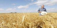 agrarische subsidies