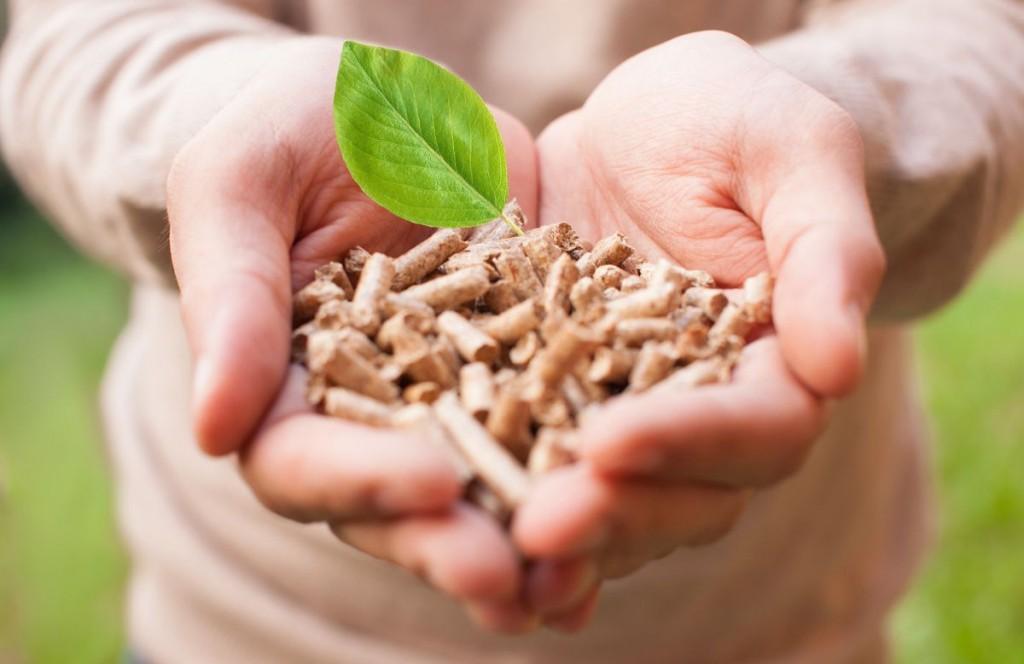 subsidie biomassaketel