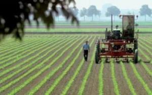 Innovatiesubsidie voor de agrarische sector