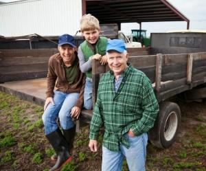 Subsidie Jonge Landbouwers